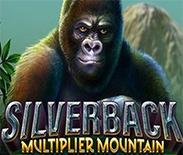 Silverback Multi Mountain